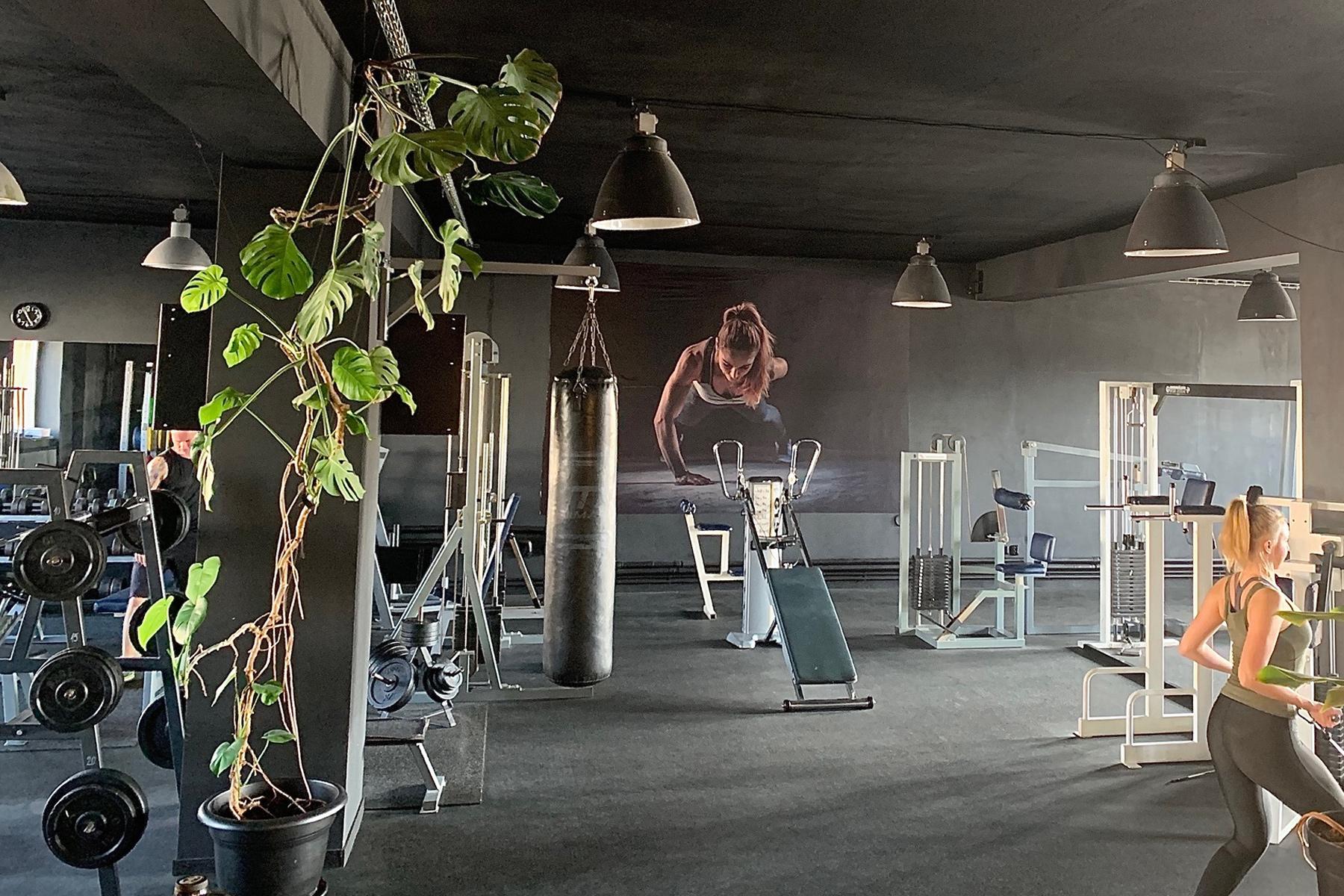 interiéry AVE fitness